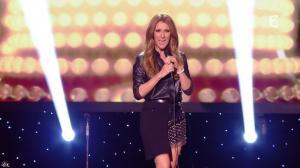 Céline Dion dans Céline Dion c est Votre Vie - 16/11/13 - 064