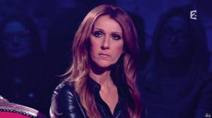Céline Dion dans Céline Dion c est Votre Vie - 16/11/13 - 070
