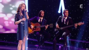 Céline Dion dans Céline Dion c est Votre Vie - 16/11/13 - 082