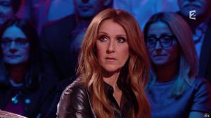 Céline Dion dans Céline Dion c est Votre Vie - 16/11/13 - 083