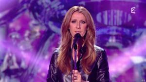 Céline Dion dans Céline Dion c est Votre Vie - 16/11/13 - 088