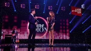 Céline Dion dans Céline Dion c est Votre Vie - 16/11/13 - 100