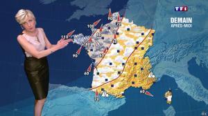 Evelyne Dhéliat à la Météo de 20h - 11/02/14 - 03