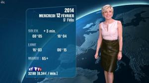 Evelyne Dhéliat à la Météo de 20h - 11/02/14 - 04