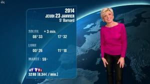 Evelyne Dhéliat à la Météo de 20h - 22/01/14 - 01