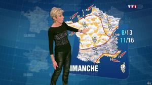 Evelyne Dhéliat à la Météo de 20h - 31/10/13 - 03