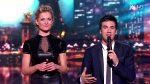 Sandrine Corman dans la France a un Incroyable Talent - 26/12/12 - 17