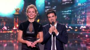 Sandrine Corman dans la France a un Incroyable Talent - 26/12/12 - 28