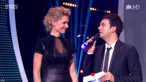 Sandrine Corman dans la France a un Incroyable Talent - 26/12/12 - 34