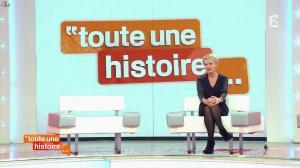 Sophie Davant dans Toute une Histoire - 16/01/14 - 02