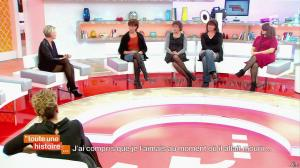 Sophie Davant dans Toute une Histoire - 16/01/14 - 04