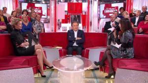 Alexandra Lamy dans Vivement Dimanche - 15/02/15 - 01