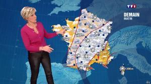 Evelyne Dhéliat à la Météo de 20h - 22/01/15 - 01
