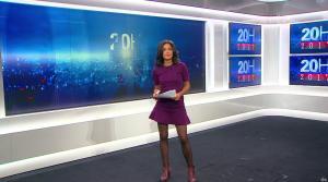 Aurélie Casse au 20h 2017 - 02/04/17 - 01