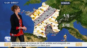 Fanny Agostini à la Météo de BFM TV - 10/02/17 - 12