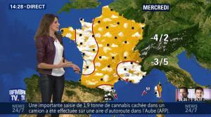 Fanny Agostini à la Météo de BFM TV - 23/01/17 - 25