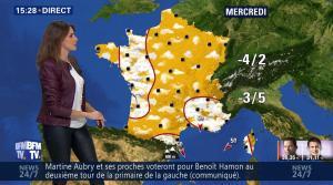 Fanny Agostini à la Météo de BFM TV - 23/01/17 - 35