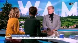 Caroline Delage dans William à Midi - 16/12/19 - 10