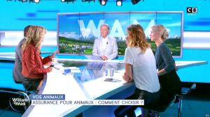Caroline Ithurbide et Sandrine Arcizet dans William à Midi - 09/09/19 - 16