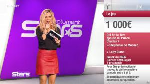 Claire Nevers dans Absolument Stars - 01/02/20 - 13