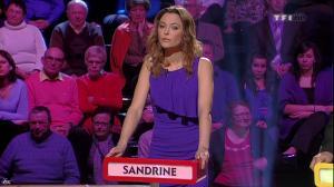 Sandrine Quétier dans le Grand Concours Des Animateurs - 11/02/11 - 1