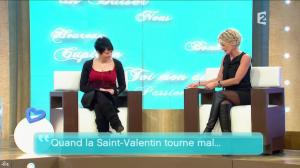 Sophie Davant dans Toute Une Histoire - 10/02/11 - 1