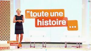 Sophie Davant dans Toute une Histoire - 17/10/13 - 03