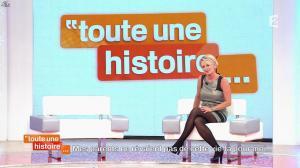 Sophie Davant dans Toute une Histoire - 29/10/13 - 06