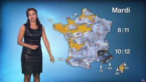 Anaïs Baydemir à la Météo de 20h - 01/11/14 - 05