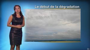 Anais Baydemir à la Météo de 20h - 01/11/14 - 06