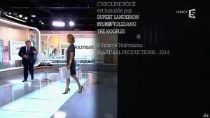 Caroline Roux dans C Politique - 05/10/14 - 114