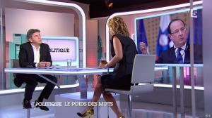 Caroline Roux dans C Politique - 07/09/14 - 07