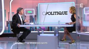 Caroline Roux dans C Politique - 07/09/14 - 08
