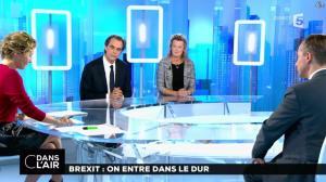 Caroline Roux dans C dans l Air - 20/10/16 - 02