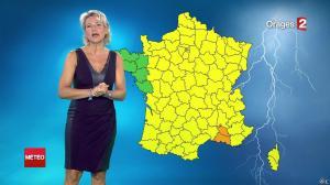 Nathalie Rihouet à la Météo de 20h - 02/08/14 - 03