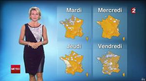 Nathalie Rihouet à la Météo de 20h - 31/08/14 - 02