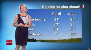 Nathalie Rihouet à la Météo de 20h - 31/08/14 - 03