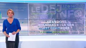 Pascale De La Tour Du Pin dans le Dej Info - 01/10/21 - 10