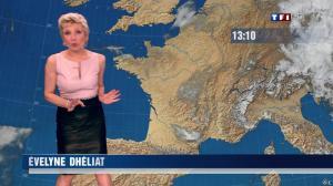 Evelyne Dhéliat à la Météo de 20h - 04/06/13 - 01
