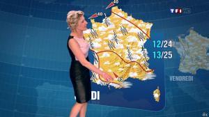 Evelyne Dhéliat à la Météo de 20h - 04/06/13 - 02