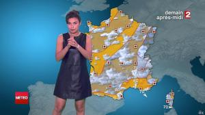 Anais Baydemir à la Météo de 20h - 29/07/14 - 032