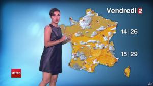 Anais Baydemir à la Météo de 20h - 29/07/14 - 074