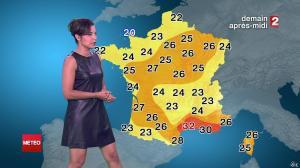 Anais Baydemir à la Météo de 20h - 29/07/14 - 159
