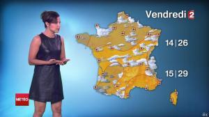 Anais Baydemir à la Météo de 20h - 29/07/14 - 178