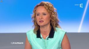 Caroline Roux dans C Politique - 27/04/14 - 13