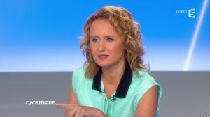 Caroline Roux dans C Politique - 27/04/14 - 17