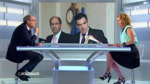 Caroline Roux dans C Politique - 27/04/14 - 19