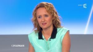 Caroline Roux dans C Politique - 27/04/14 - 24