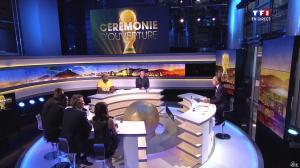 Estelle Denis lors de la Soirée d'Ouverture du Mondial - 12/06/14 - 01