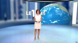 Nathalie Renoux dans le 19-45 - 17/07/15 - 01